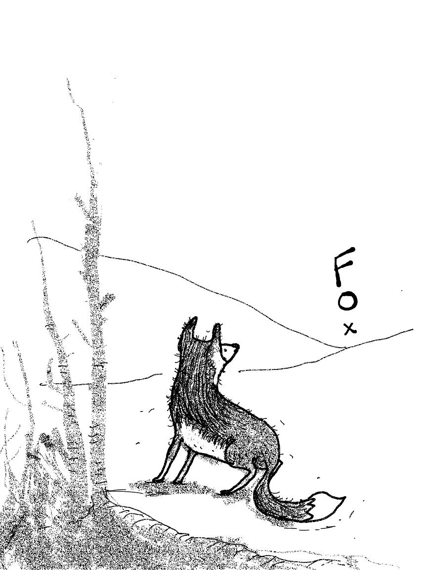 Fox looking far away